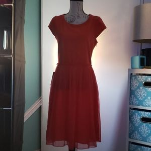 Bright Red Skater Dress NWT Tall